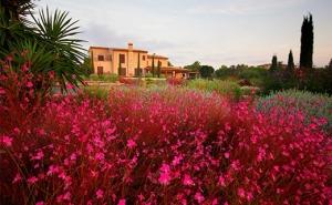 Can Bebo - Diseño de jardines en Mallorca