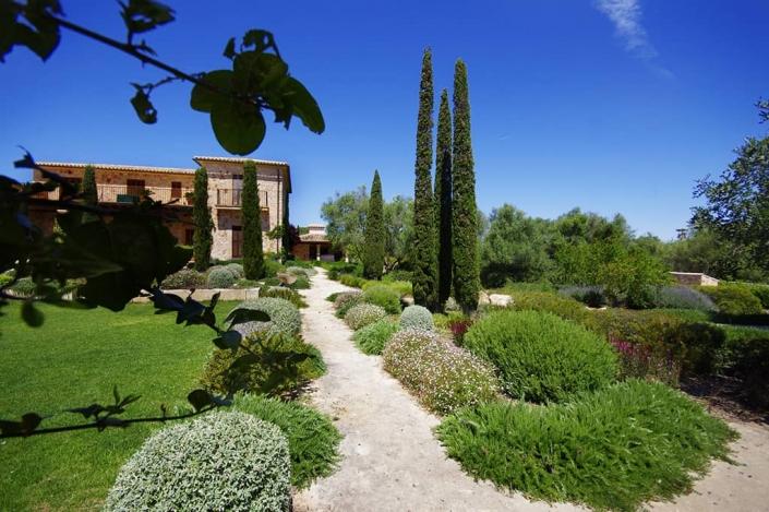 Photos design and construction of garden in Can Brera - Mallorca - Viveros Pou Nou - Landscape architect: Maria Sagreras