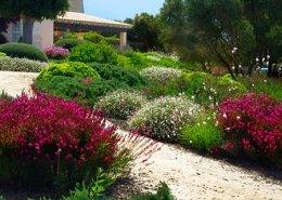 Landschaftsbauprojekt von Maria Sagrera in Sta. Marina - Mallorca - Viveros Pou Nou
