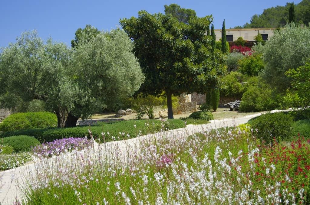 Jardín en Es Carritxó - Diseño de jardines en Mallorca