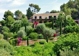 Details of garden in finca Es Carritxó - Mallorca - Garden Center Viveros Pou Nou