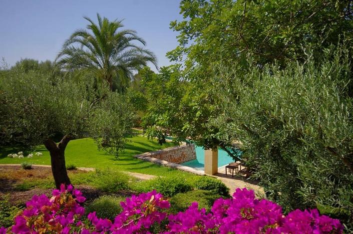 Landschaftsbauprojekt von Maria Sagreras in S'Alqueria - Mallorca - Viveros Pou Nou