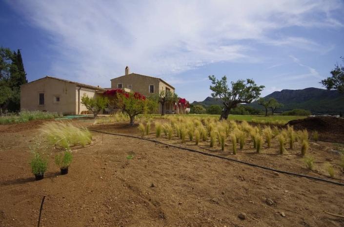 Landscaping In Mallorca - Son Rierol garden design