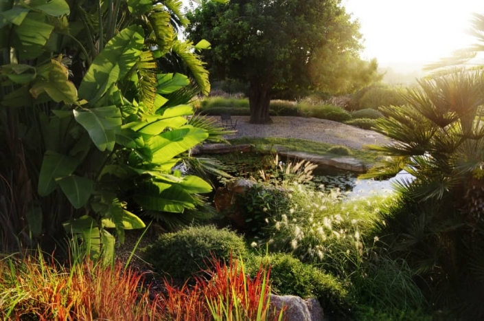 Proyecto paisajismo en Mallorca - Son Ferreret - diseño de jardín