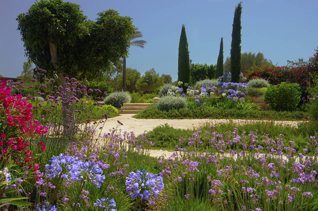 Can Bebo garden designed by Viveros Pou Nou - Landscaping projects In Mallorca