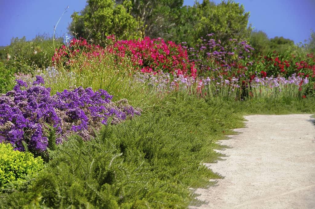 Landschaftsbau In Mallorca, Can Bebo Garten von Viveros Pou Nou entworfen