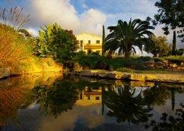Landschaftsbauprojekt von Maria Sagreras in Son Ferreret - Mallorca - Viveros Pou Nou