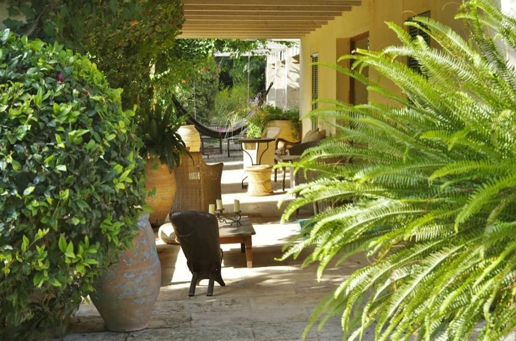 Sa Mesquida, Garten von Viveros Pou Nou - Mallorca