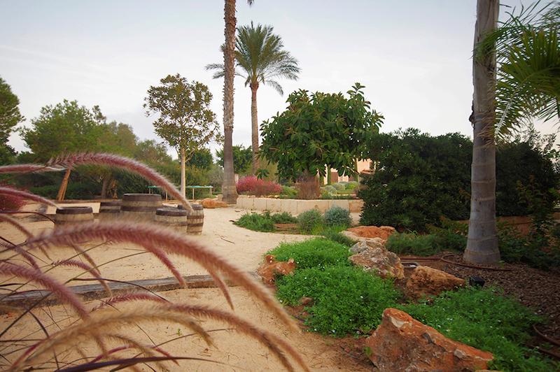Design-Garten-Landschaftsgartner-Mallorca