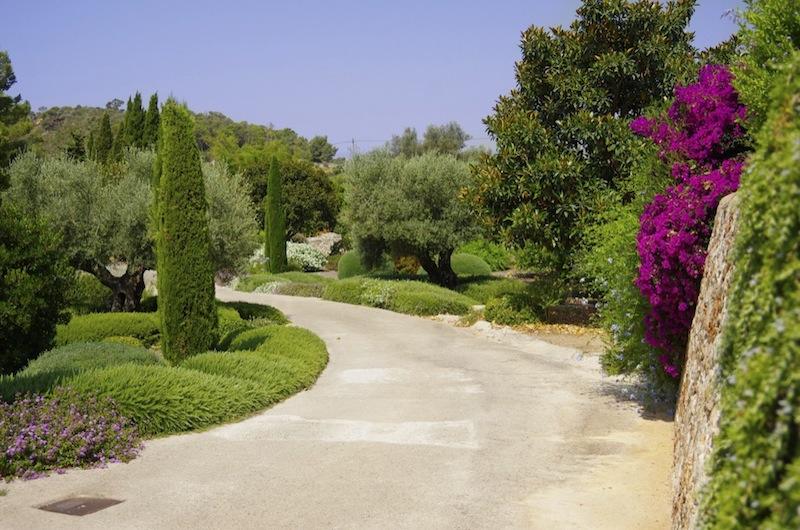 Firmen-Landschaftsbau-Mallorca