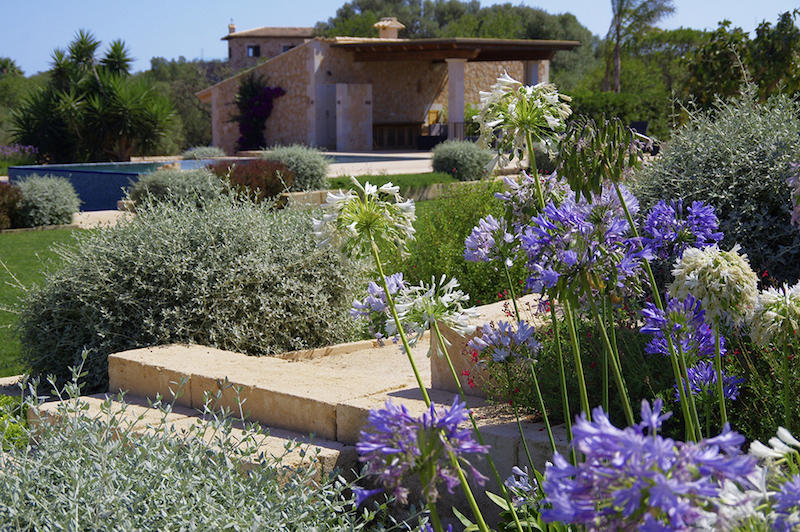 Landscaping-in-mallorca