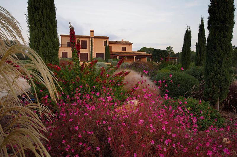flores-y-jardines-en-mallorca