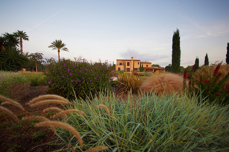 paisajismo-y-jardines-mallorca