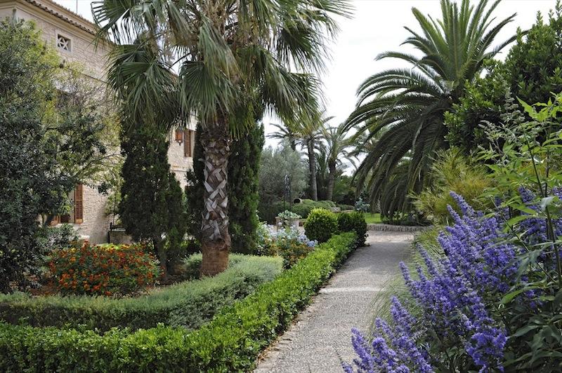 garden design : Maria Sagregras ESP